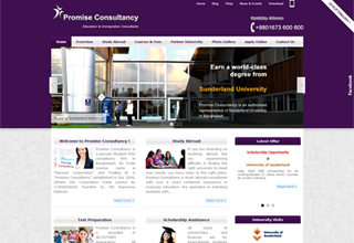 Promise Consultancy